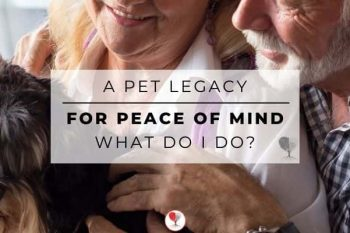 A pet legacy for peace of mind what do i do